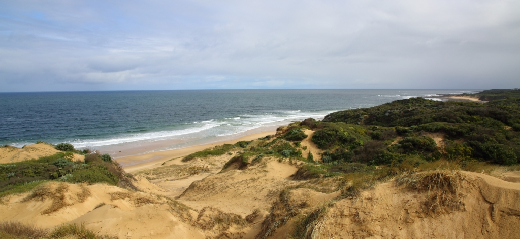 This image has an empty alt attribute; its file name is dunes-and-2nd-surf-beach-the-cape-25-aug-20.jpg
